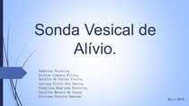 Sonda Vesical de Alívio