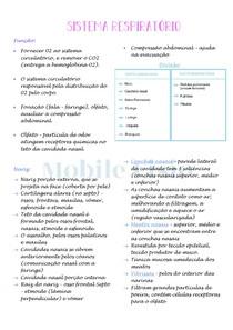 Anatomia Humana: Sistema respiratório