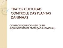 AULA 10 TRATOS CULTURAIS (USO DE EPI S) - Olericultura c90bbf7c8d
