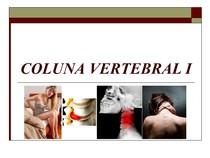 coluna vertebral exames por imagem