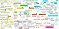 Tecido Conjuntivo - Mapa Conceitual