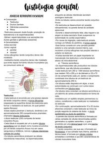 Histologia Genital