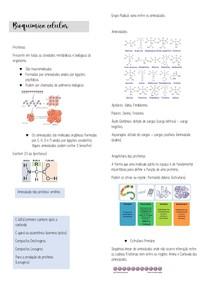 Proteínas, Bioquímica Celular