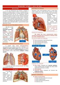 Pericárdio mediastino e vasos da base