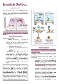 Imunidade Bactérias Intracelulares