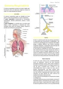Resumo_Sistema Respiratório