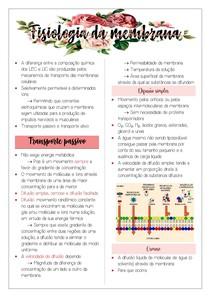 Fisiologia da membrana plasmática: Transporte passivo e ativo