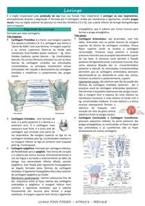 Laringe, Tireoide e Paratireoide - resumo