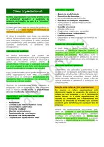 Resumo Enxuto - Clima organizacional