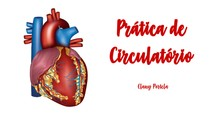 Prática de Circulatório