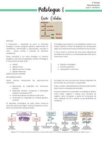 AULA 7- Patologia I