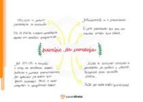 Princípio da cronologia - Mapa Mental