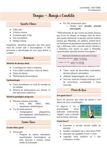 Dengue - Manejo e Conduta, classificação de risco