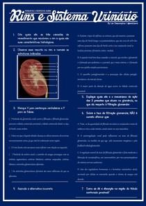 8 Perguntas e Respostas sobre Rins e Sistema Urinário