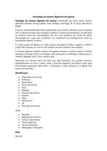 Resumo - Semiologia do sistema digestório de equinos