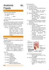 Resumo de Anatomia do Fígado.docx