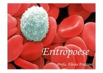 Eritropoese_índices hematimétricos_2013_2 [ Modo de Compatibilidade]