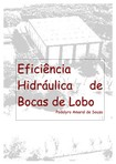 Eficiencia Hidraulica de Bocas de Lobo