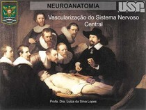 Vascularização do Sistema Nervoso Central USP