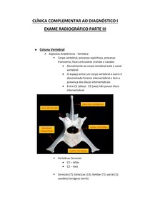 Exame Radiográfico Parte 3