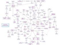 NEURÔNIO + DENTRITOS + AXÔNIOS + CIRCUITOS NEURAIS