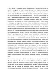 Ciclo Biológico Giardia Lamblia