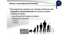Neurobiologia #8 - Genes e Neurodesenvolvimento