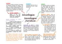 RESUMO   SOCIOLOGIA JURIDICA
