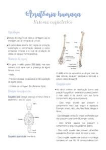 Anatomia Humana - Sistema Esquelético