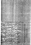 Livro Rochas Sedimentares - Kenitiro Suguio