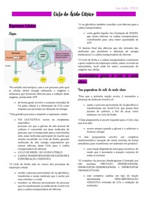 Bioquímica - CICLO DO ÁCIDO CÍTRICO