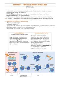IMUNOLOGIA - INATA E ADAPTATIVA/INFLAMAÇÃO/SISTEMA COMPLEMENTO/REAÇÕES DE HIPERSENSIBILIDADE
