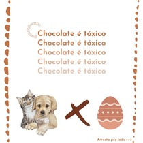 Chocolate X Pequenos animais