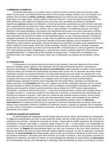 Resumo citologia parte 1