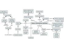 Mapa mental - histologia do túbulo contorcido proximal