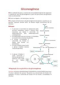 4. Gliconeogênese