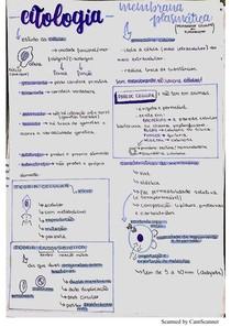 Citologia - Histologia I - Medicina Veterinária
