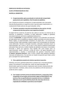 EXERCICIO REVISAO AV2 HIST
