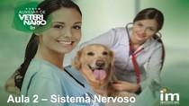 Auxiliar veterinário - Aula 4