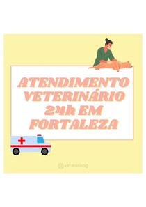 Atendimento veterinário 24h em Fortaleza