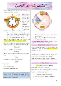 Resumo Controle do ciclo celular