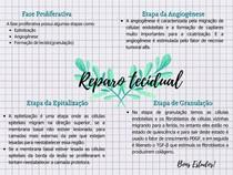 Reparação Tecidual(Fase proliferativa)