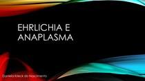 Ehrlichia e Anaplasma