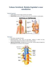 Coluna Vertebral e Medula Espinhal