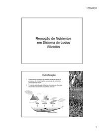 2018517 83758 Remoçao+de+Nutrientes+em+Lodos+Ativados