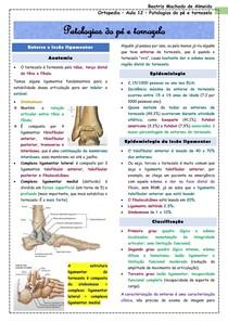 Ortopedia - Aula 12 - Patologias do pé e tornozelo
