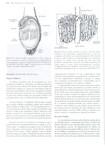 104 a 127 - Reproduçao Animal - Hafez & Hafez