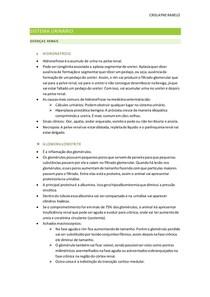 Sistema urinário - doenças renais