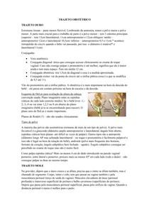 Trajeto obstétrico e Estatica Fetal