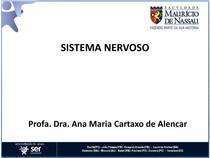 aula_3.3_sistema_nervoso